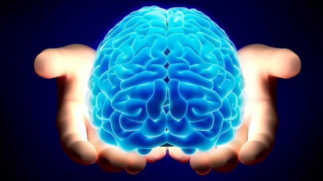Картинки по запросу мозг