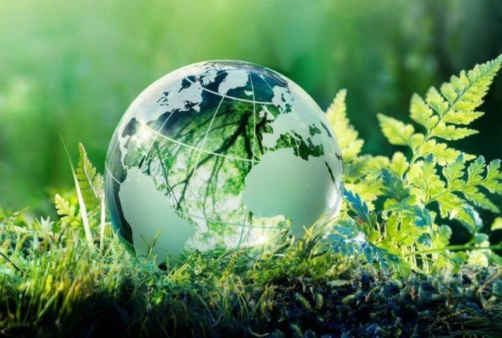 Экология — актуальная проблема для Харькова и страны