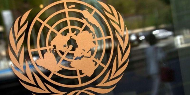 Украина обратилась в Совбез ООН из-за указа Путина относительно гражданства