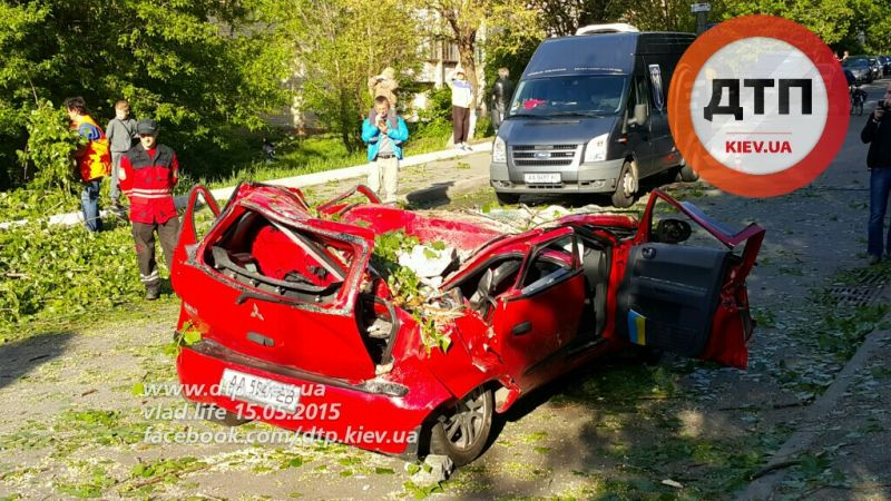 В результате падения дерева в Киеве погибла 5-летняя девочка