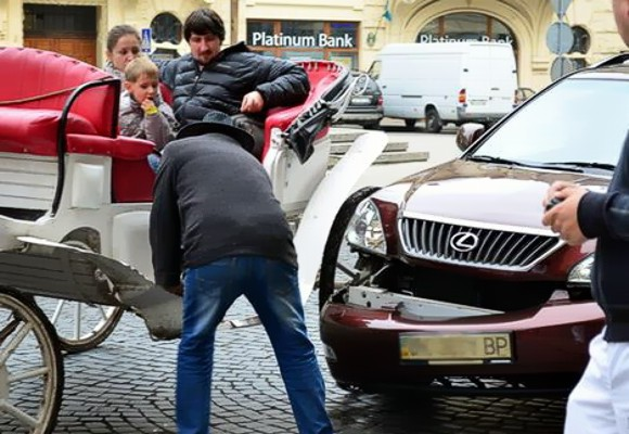 Курьезное ДТП во Львове: Повозка с лошадьми помяла Lexus с номерами Верховной Рады