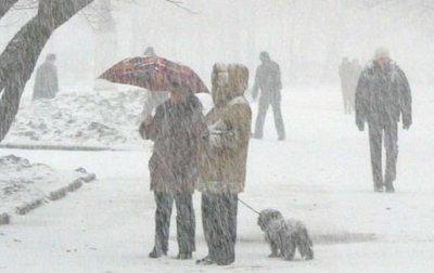 Саакашвили распорядился закрыть трассу Одесса-Киев из-за снегопада