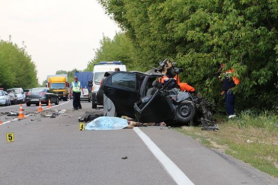 В Винницкой области два человека погибли в ДТП из-за кота