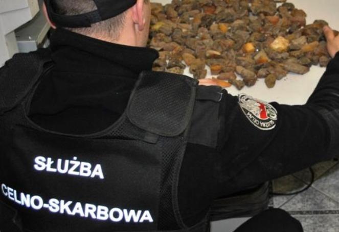 Гражданин Украины вез в топливном баке контрабанду янтаря и сигарет