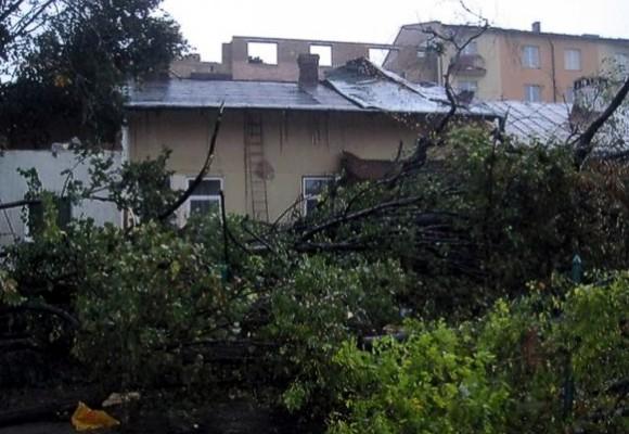 В Самборе прошел ураган, есть пострадавшие